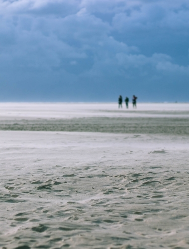 White sands, Pexel island, Netherlands